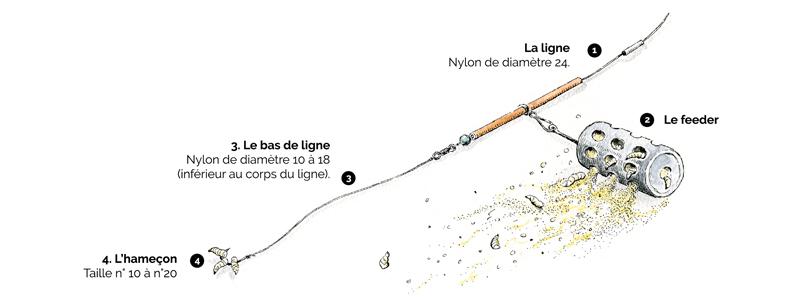 Schéma de montage de ligne pour pêche au feeder