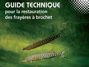 guide technique pour la restauration des frayères à brochets